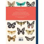 Papillons de A à Z